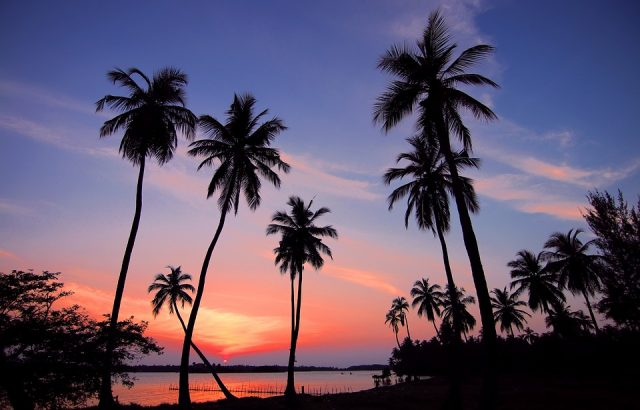 Séjour au Sri Lanka: quelques expériences authentiques à vivre absolument