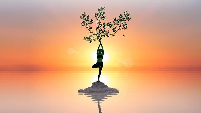 Énergie vitale, le Yin et le Yang
